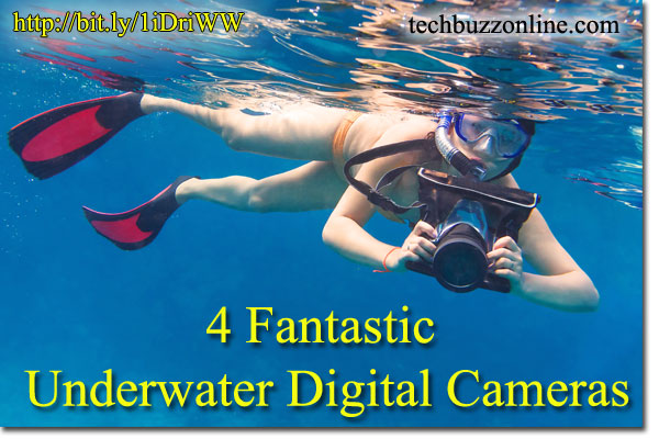 4 Fantastic Underwater Digital Cameras