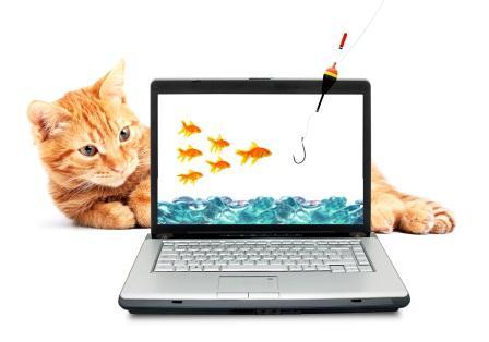 internet-activities