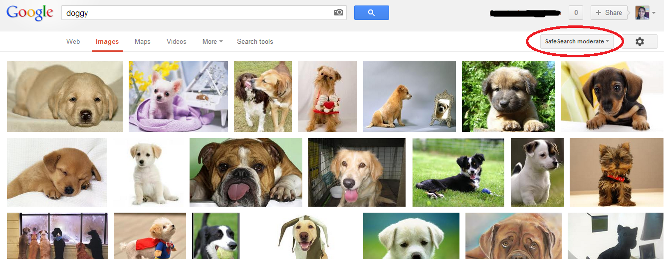 Google image search SafeSearch Moderated