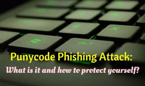 What is Punycode Phishing Attack and how to protect yourself