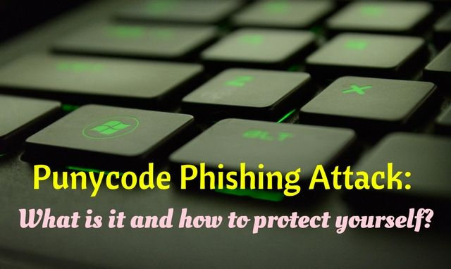 What is Punycode Phishing Attack and how to protect yourself?