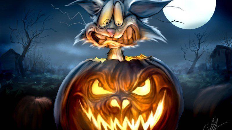 Jack-O-Lantern Spooky Cat