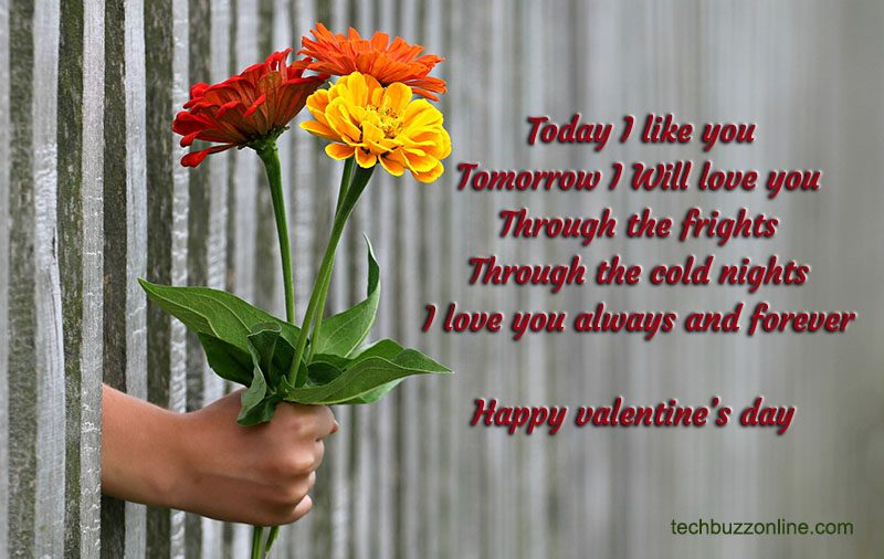 Valentine Wishes 4