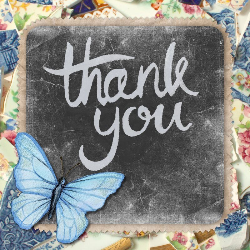 21 thank you greeting card butterfly