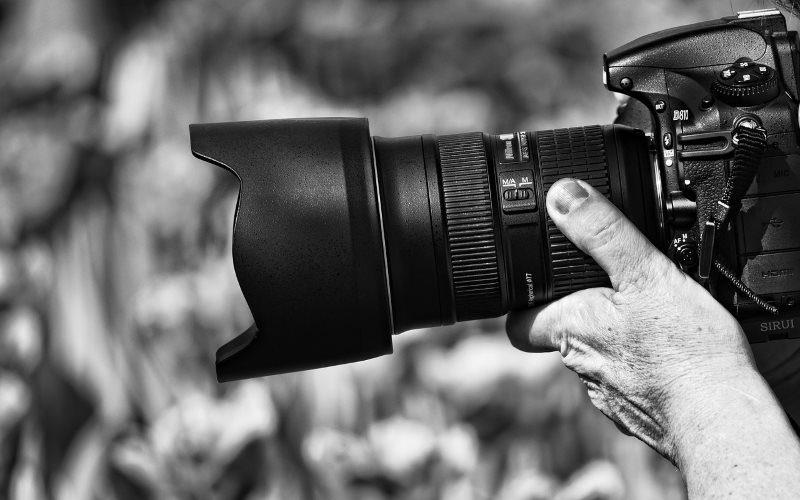 establish photography expert