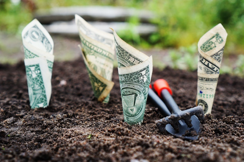 How To Grow An Online Business With Minimal Or No Funds