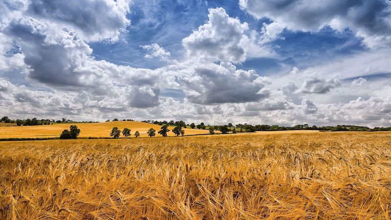 Summer Sky Clouds Fields Landscape Wallpaper