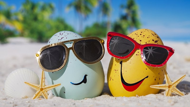 beach egg sunglasses